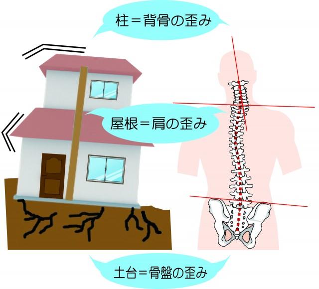 骨盤と家の土台との関係