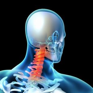 頚椎の説明