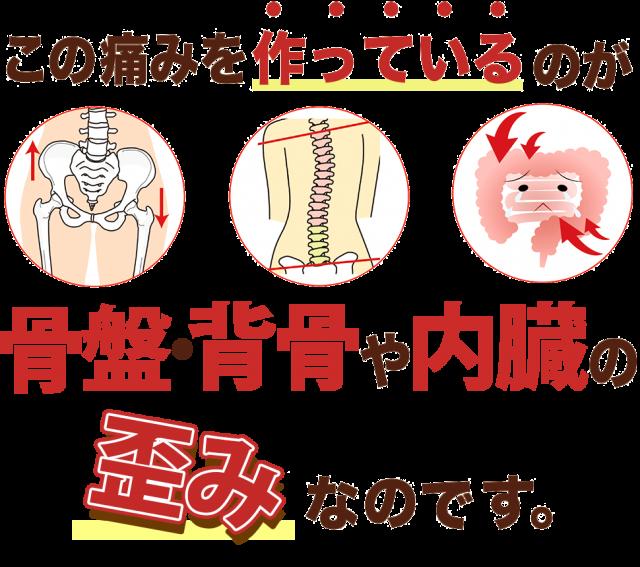 首の痛みコリの原因は歪背骨や骨盤、内臓の歪みみです!